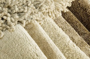 Selecting The Best Neutral Color For Carpeting