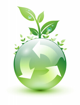 Choosing A Sustainable Wood Floor For Earth Day