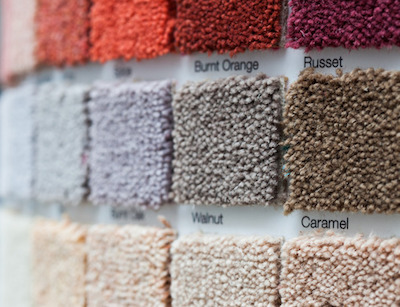 Comparing Carpet Fibers