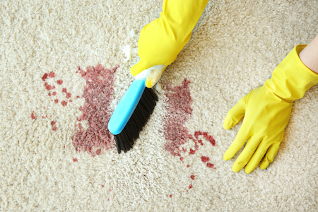 Stain Resistant Carpet Is Still a Necessity