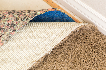 Shop For Padding Along With Your Carpet