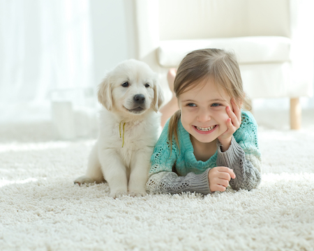 The Benefits of Carpeting Your Home