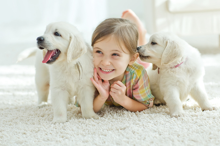What You Should Know About Carpet Remnants