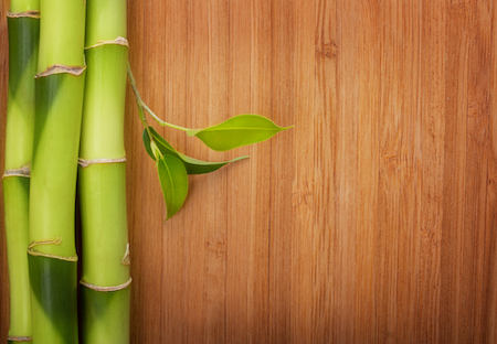 Why The Popularity of Bamboo Flooring Is Growing
